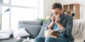 Alergia na zvieratá
